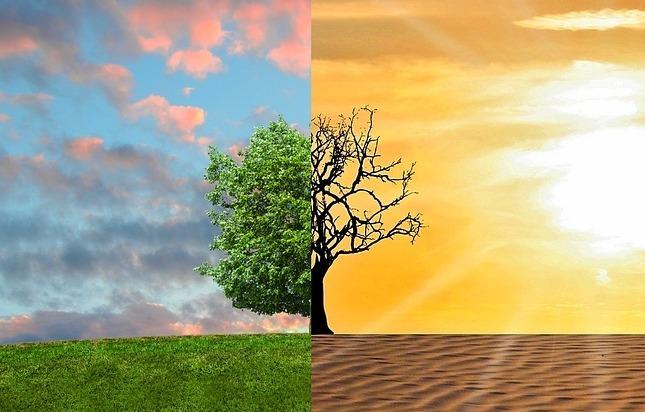 """Mesa """"Acción por el Clima"""""""